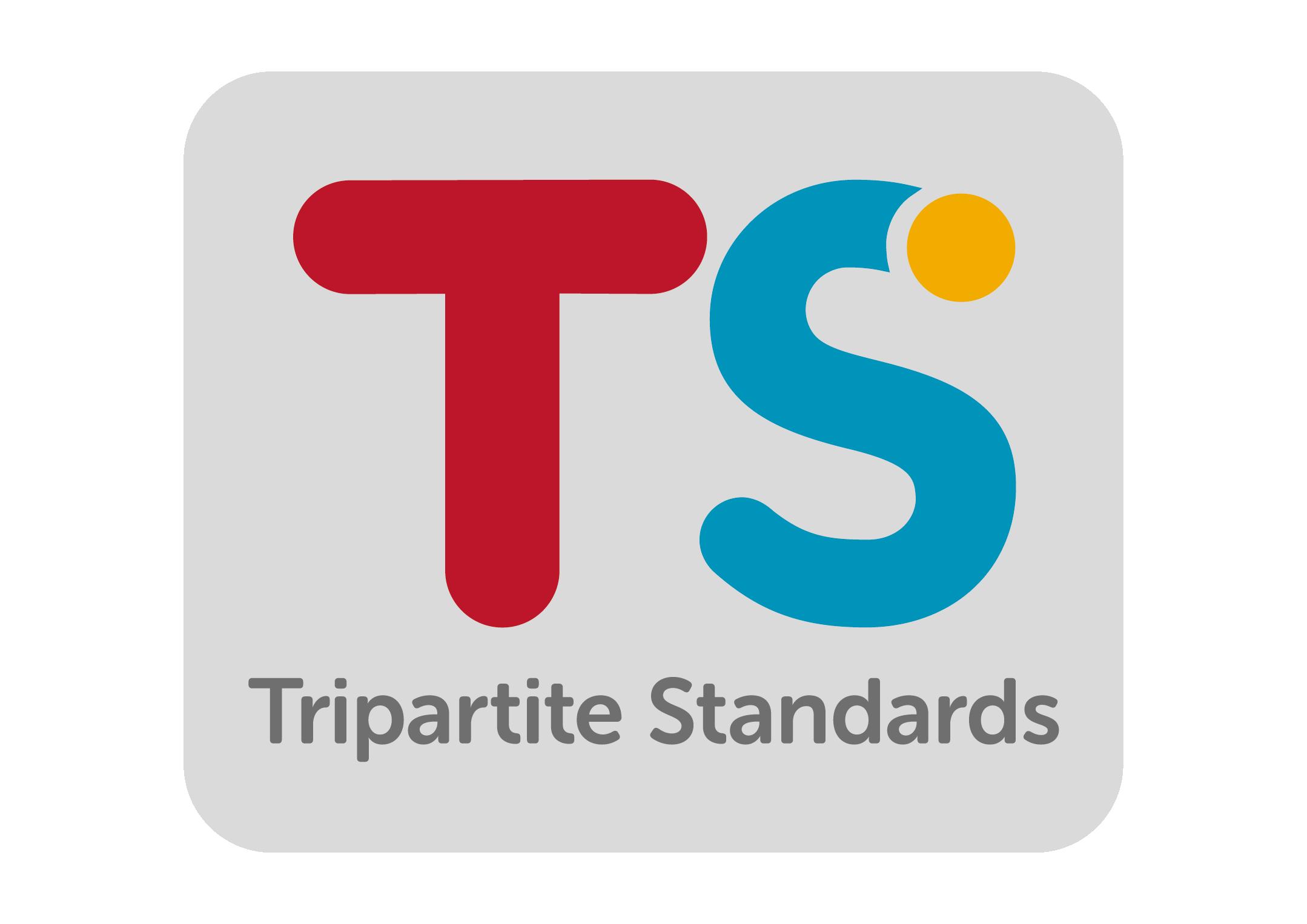 Tripartite Fine Work Service Enterprise